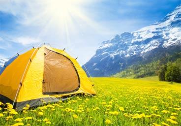 Zelt auf Löwenzahnwiese
